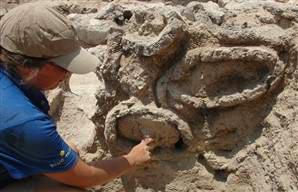 Tìm thấy tổ ong 3.000 năm tuổi ở Israel