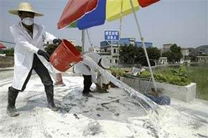 Trung Quốc đẩy mạnh phòng chống dịch cúm gia cầm