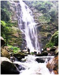 Khu dự trữ sinh quyển Tây Nghệ An được công nhận là khu dự trữ sinh quyển thế giới