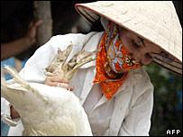 Thiết bị phát hiện virus cúm gia cầm H5N1