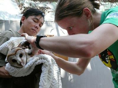 Sau gần một tháng hoạt động, cứu hộ 270 con thú