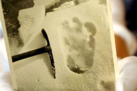 """Tiết lộ """"Dấu chân người tuyết trên dãy Himalaya"""""""