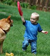 Trẻ con hay bị chó cắn vì... mất trật tự