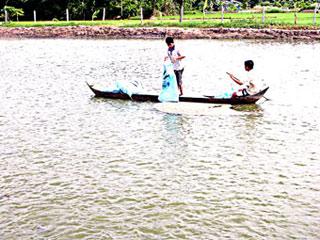 Bảo vệ môi trường nước mặt ở Đồng bằng sông Cửu Long
