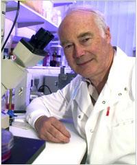 Nobel Y học 2007 tôn vinh nghiên cứu tế bào gốc
