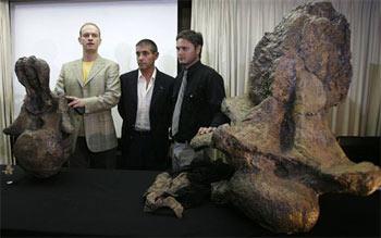 Phát hiện bộ xương khủng long khổng lồ lành lặn nhất