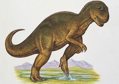 Bà mẹ tuổi teen - chuyện thường gặp ở khủng long