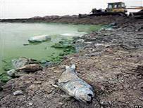Trung Quốc: chi 14,5 tỉ USD làm sạch Thái Hồ