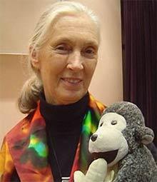 Hiệp sĩ môi trường Jane Goodall tới Việt Nam