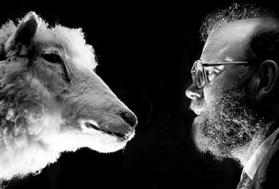 """""""Cha đẻ"""" cừu Dolly từ bỏ nghiên cứu sinh sản vô tính"""