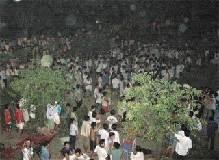 Động đất ở TP.HCM, Vũng Tàu, Nha Trang, Phú Quý, Bình Thuận