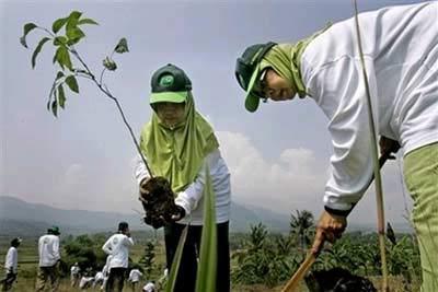 Indonesia phát động toàn dân trồng cây