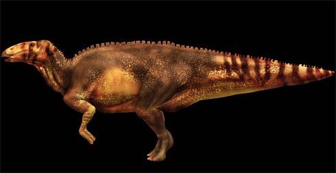 Phát hiện hóa thạch khủng long 67 triệu năm tuổi