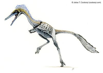 Những con khủng long nhỏ nhất