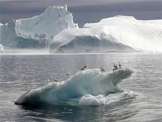 Khi băng ở Greenland tan...