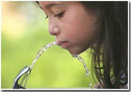 Con người không thể thiếu nước quá 3 ngày