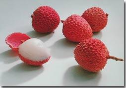 Giải pháp xử lý phế phẩm sau chế biến tại Công ty chế biến rau quả Bắc Giang.