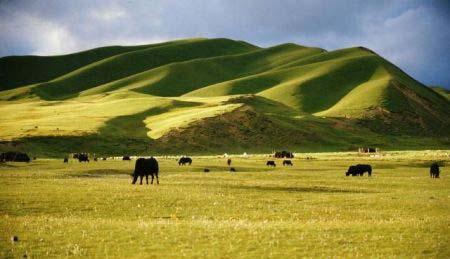 Cao nguyên Tây Tạng nâng cao theo từng giai đoạn