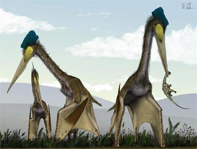 Bò sát bay khổng lồ chén cả khủng long