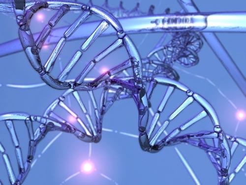 Quan sát quá trình sửa chữa ADN ở thời gian thực