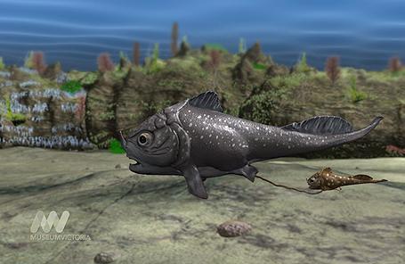 Hóa thạch cá 380 triệu năm tuổi mang bào thai