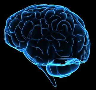 Phương pháp hạ nhiệt trong điều trị tổn thương não