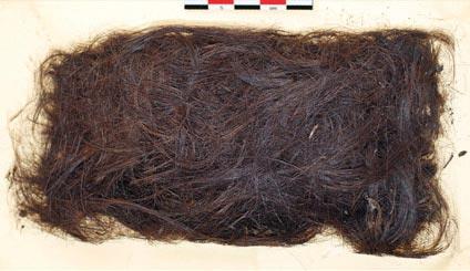 Tóc tiền sử cho thấy những người Eskimo đầu tiên đến từ châu Á