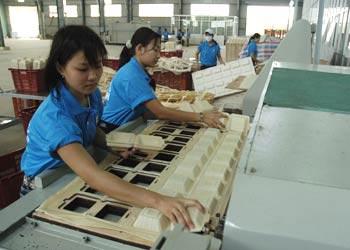 Dùng bột bắp sản xuất bao bì tự hủy