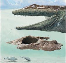 Phát hiện hóa thạch sinh vật 4 chân nguyên thủy nhất