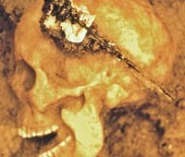 Gien Ả Rập trong ngôi mộ Đan Mạch thời Đồ Sắt