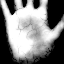 """Lòng bàn tay <i>""""đáng tin cậy""""</i> hơn ngón tay"""