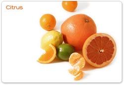 Vitamin và bệnh truyền nhiễm
