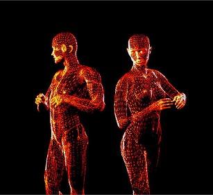 Người có cơ thể cân đối thì hấp dẫn hơn trong mắt của người khác giới