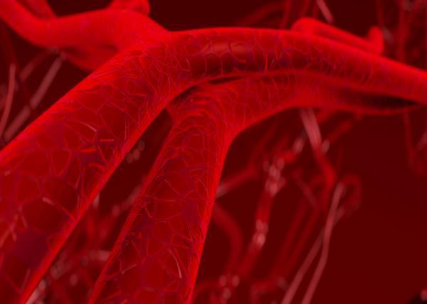 Phân tử kiểm soát sự phát triển mạch máu
