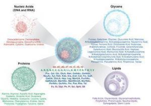 68 phân tử chìa khóa tiến tới hiểu rõ bệnh hiểm nghèo
