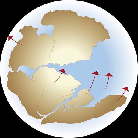 Siêu lục địa Pangaea được hình thành như thế nào?