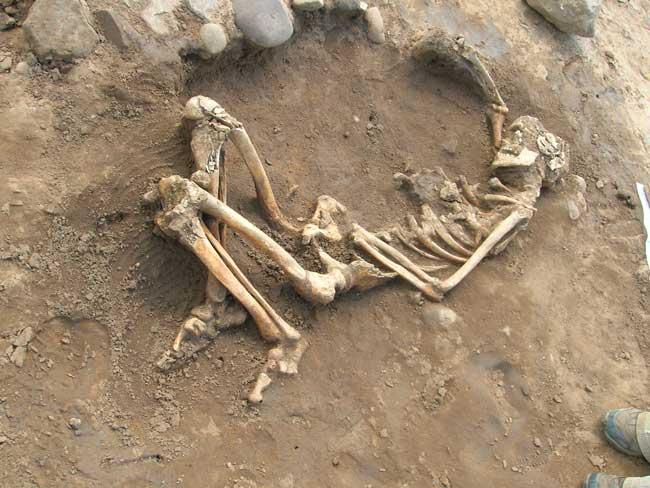 Phát hiện bộ xương của một trong những nạn nhân mắc bệnh lao sớm nhất