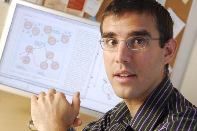 Nhiều virut cùng quyết định số phận tế bào vi khuẩn
