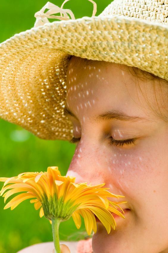 Các nhà khoa học có thể làm tăng hương thơm của hoa