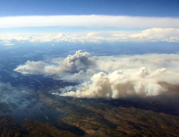 Cháy rừng và ô nhiễm ôzôn