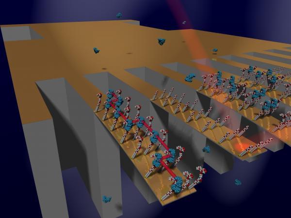 Công nghệ nano trong cuộc chiến chống siêu vi khuẩn