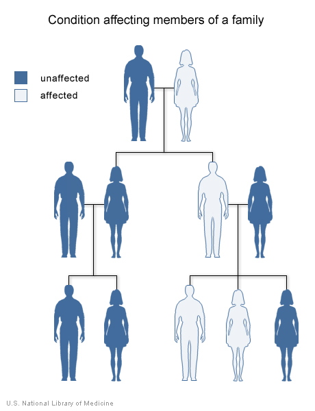 Vận mệnh di truyền của con bạn?