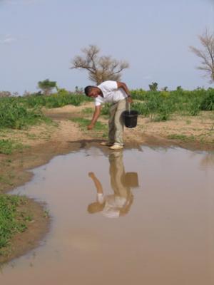Thay đổi môi trường để chống lại sốt rét