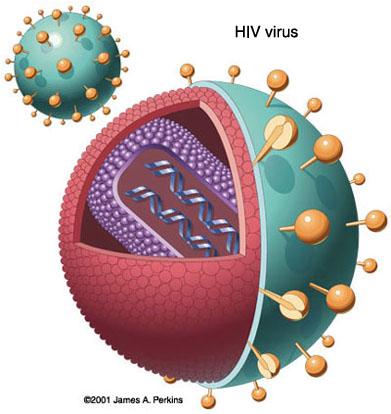 HIV trở nên nguy hiểm hơn?