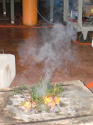 Các chất hoá học độc hại được phát hiện trong khói lửa cháy rừng