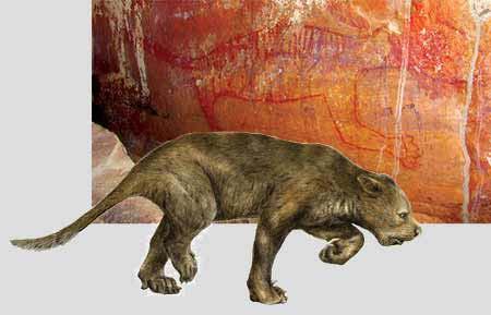 Sư tử có túi từng tồn tại