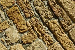 Phương pháp xác định niên đại khảo cổ mới
