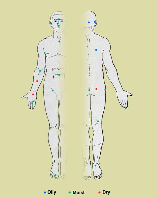 Nhiều loại vi khuẩn được tìm thấy trên da