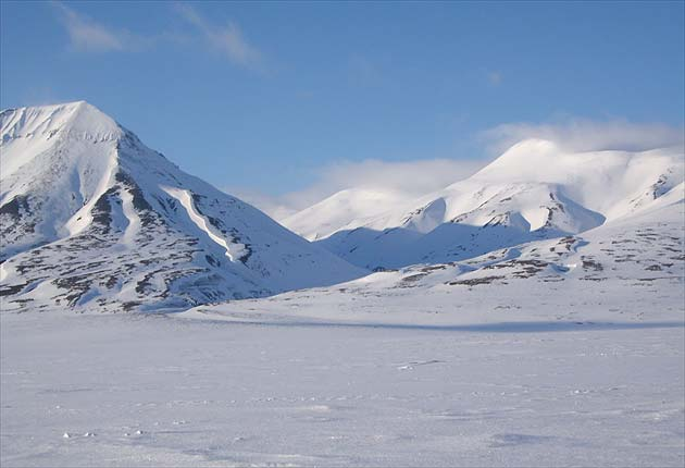 Các sinh vật cổ tồn tại trong mùa đông Bắc Cực