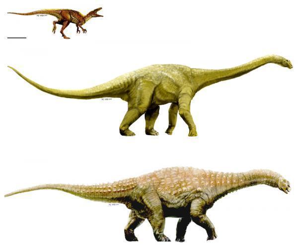 3 hóa thạch mới đưa Úc trở lại bản đồ khủng long